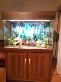 300 LITER AQUA ONE FISH TANK WITH CURVED EDGES,,FULL SET UP
