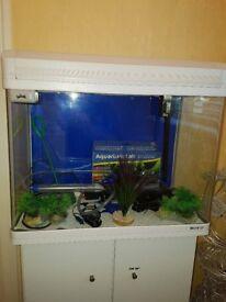 70 Ltr Boyu Elegance Aquarium Fish Tank with white cabinet and hood £150 ono