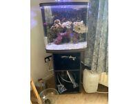 90L Red Sea marine aquarium