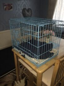 Small blue cage