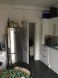 Lovely double Room in large spacious flat for one person in busy urban area.