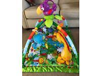 Fisher Price Rainforest Gym Baby Playmat