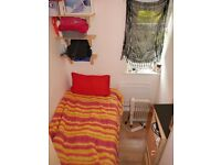 ! SINGLE in HIGH ROAD (zone 2) for ONLY 110pw!