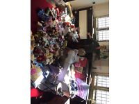 Car Boot Sale Items, Job Lot, Dolls, Teddy Bears, Jewellery, Jigsaws, Watch, Drinks Decanter