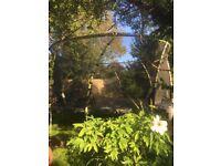 14ft wirlwind plum trampoline