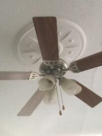 Ceiling fan & lights