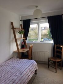 Room to rent in 3 bedroomed house with one other and small dog. Off street parking