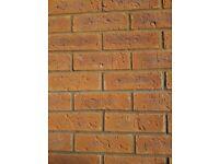 400 golden russet house bricks