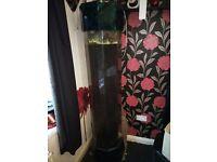 6 foot vertical fish tank