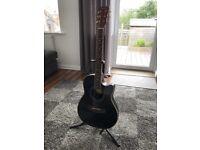 Acoustic Steel String Guitar