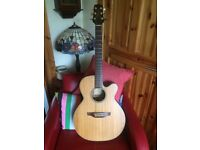 Takamine Electro-Acoustic Guitar with soft Case