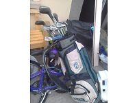 Various golf clubs and bag