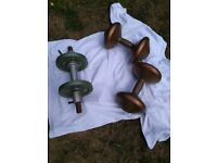 Barbell spur and Orbatron weights