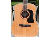 Washburn Solid Spruce Top Acoustic Guitar Model D10SK