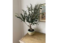 Pair of faux miniature olive trees from OKA