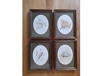 "4 framed ""wildlife"" prints"