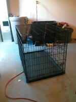 Large petmate dog crate