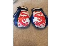 Turner Max 12oz boxing gloves