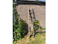 2 Section Wooden Ladder 6ft closed