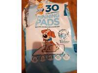 26! training pads