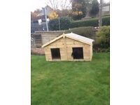 Dog Kennel Double Apex Kennel Pressure Treated Tanalised 6FT x 3FT