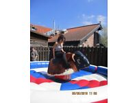 GS ENGINEERING RODEO BULL EXCELLENT CONDITION LONG TEST IDEAL BOUNCY CASTLE ADD ON