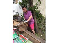 Gardening, advice and maintenance