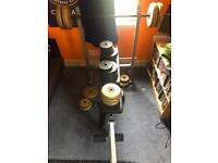 Weight bench, barbell, dumbbells and free weights