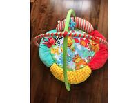 Baby play mat /gym