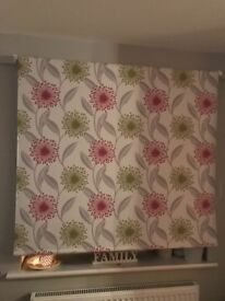 Lime & Fuchia Patterned Curtains