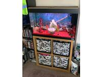 Fluval 125 litres fish tank. Like new with cabinet & draws