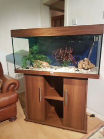 JUWEL RIO 180 LITER FISH TANK AND STAND FOR SALE,,GOOD USED CONDITIONS,FULL SET UP