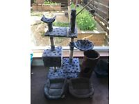 Cat stand and 3 cat beds, all practically new