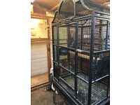 Large parrot cages with cockateil
