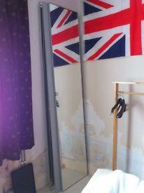 """6 x wardrobe mirrors (pax @ Ikea) 90"""" x 19.5"""""""