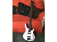 Tobias Bass Guitar