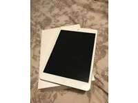 iPad Mini 2 (32gb) immaculate