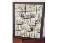 """FRAMED CIGARETTE CARDS """"FAMOUS BEAUTIES"""" BY PLAYERS ."""
