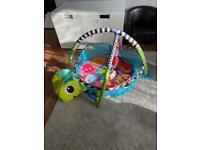 Turtle Ball Pitt/Play Gym