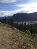 Breathtaking lake view acreage in Sicamous BC
