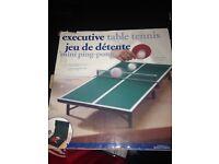 Mini table tennis set