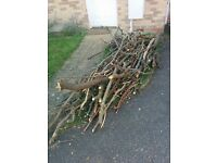 Free Wood ready to be pick up (no delivery available)