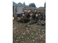Free wood for house or garden fire