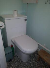 2 used vanity toilets