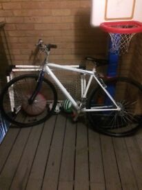 Mountain bike was project basically finished just needs finishing a bike all works