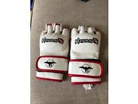 MMA gloves and groin protector