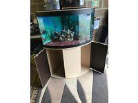 190l corner fluval fish tank full set up with stand heater fluval 206 ex filter 2x light gravel
