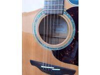 Takamine EG 523 sc jumbo acoustic guitar