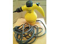 Electrolux Hand-held Enviro Steam Cleaner