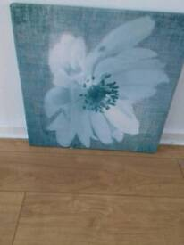 Blue flower canvas pic for sale